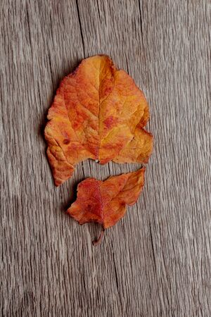 Autumn leaf broken into two halves on a wooden background. concept