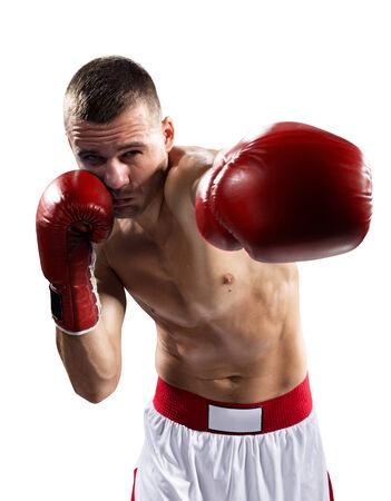 boxer: Boxeador Professionl encuentra aislado en fondo blanco Foto de archivo