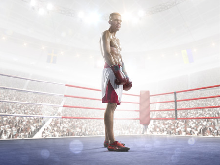 Professional boxer is training on the grand arena in lights