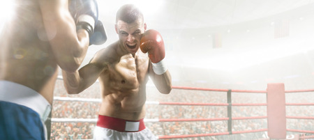 ring light: Two professionl boxers are fighting on the grand arena