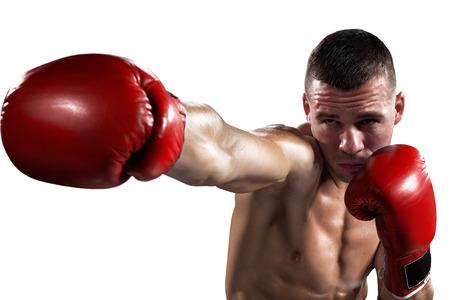 boxeador: Boxeador Professionl encuentra aislado en fondo blanco Foto de archivo