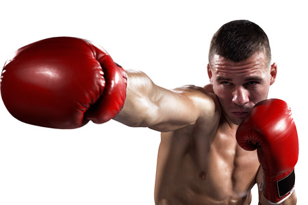 boxer: Professionl boxer is isolated on white background
