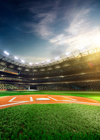 outfield: Professional baseball grand arena in the sunlight