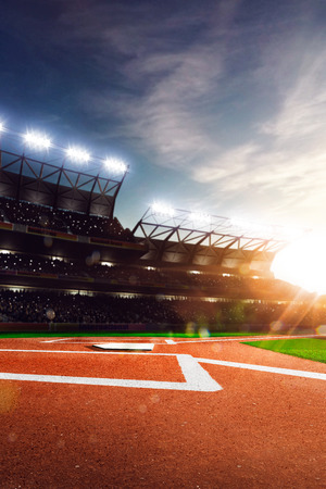 baseball field: Professional baseball grand arena in the sunlight
