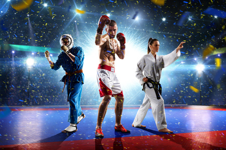 Multi sports boxing karate taekwondo collage on grand court Фото со стока
