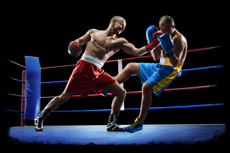 professional boxers are isolated on black background dark