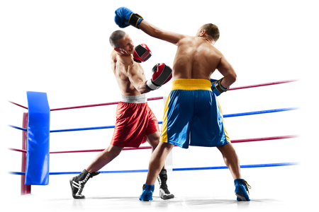 professional boxers isolated in white background dark