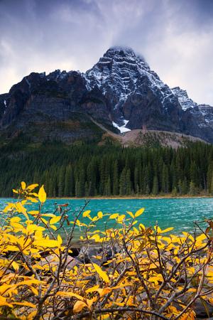 chephren: Mount Chephren and Chephren Lake in Banff National Park, Canada
