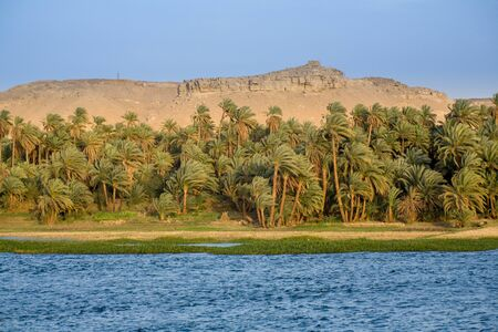 The river Nile, Palms, and Desert Egypt