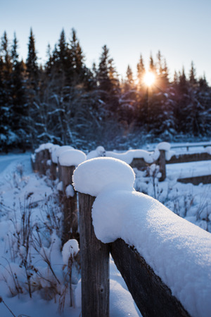 Snow covered wooden fence on a cold winters day with the sun setting behind the forest