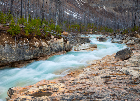 Marble Canyon in Kootenay National Park, British Columbia, Canada 免版税图像