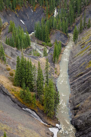 Aerial view of a mountain creek in a deep canyon, Rocky Mountains, Canada