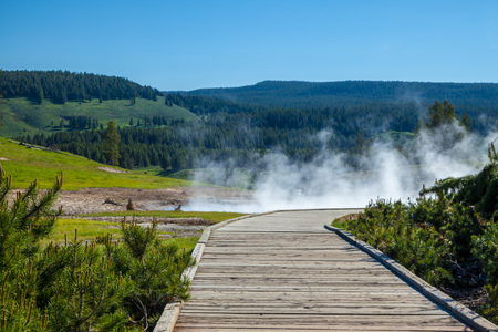 A steaming thermal area in Yellowstone National Park, USA