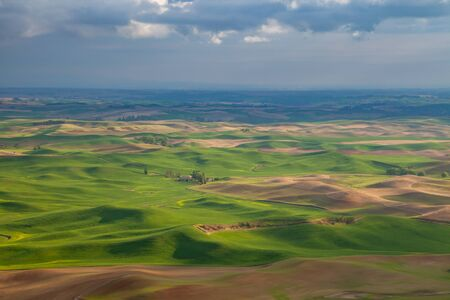 Aerial view of the farmland in the Palouse region of Eastern Washington state, USA Banco de Imagens - 130439711