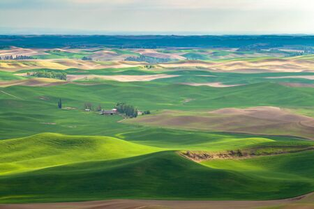 Aerial view of the farmland in the Palouse region of Eastern Washington state, USA Stock Photo