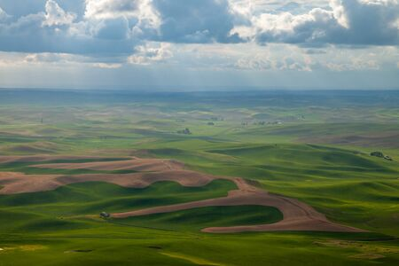 Aerial view of the farmland in the Palouse region of Eastern Washington state, USA Banco de Imagens - 130439716