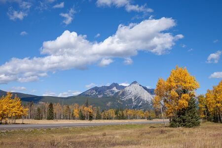A highway through the Canadian Rocky Mountains in Kananaskis, Alberta, Canada, during the peak of autumn colors Banco de Imagens - 137056401
