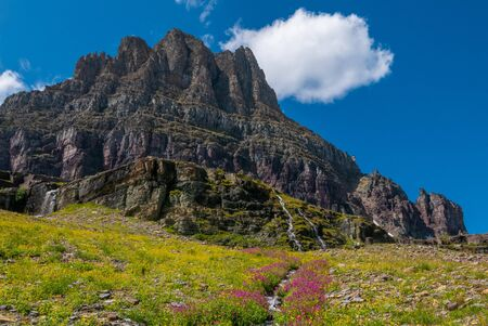 Wild flowers and mountain meadows along the Hidden Pass Trail in Logan Pass area of Glacier National Park, Montana, USA Banco de Imagens - 132714663