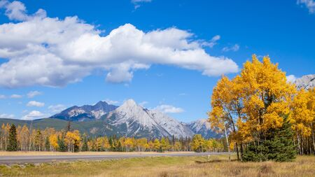 A highway through the Canadian Rocky Mountains in Kananaskis, Alberta, Canada, during the peak of autumn colors Banco de Imagens - 137054734