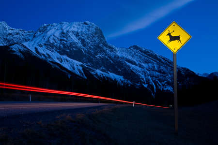 Caution deer or wildlife sign in the mountains at night in Kananaksis, Alberta, Canada