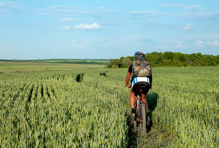 hay field: cyclist standing up in a hay field