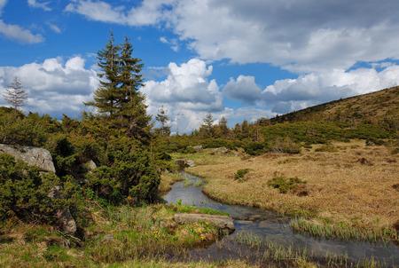 tourist destinations: Among the popular tourist destinations of Ukraine tour of the mountain river of Montenegro and Svydovets ridge. Stock Photo