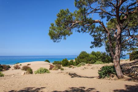 View of Patara sand beach. Antalya Province. Turkey