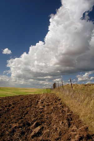 plowed: Rich California Farm Land and Deeply Plowed Furrows, Beneath Deep Blue Spring Sky and Dramatic Cumulus Clouds Stock Photo