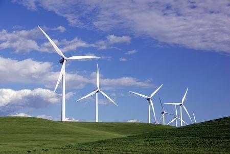 turbina: Stark White generaci�n de energ�a el�ctrica de los aerogeneradores en colinas verdes de trigo de primavera, debajo de las nubes de primavera, Rio Vista, California