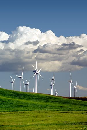vista: Stark White Electrical Power Generating Wind Turbines on Rolling Wheat Covered Hills, Beneath Dramatic Spring Cumulus Clouds, Rio Vista, California