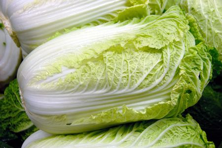 romaine: Heads of Leafy Romaine Lettuce  Stock Photo