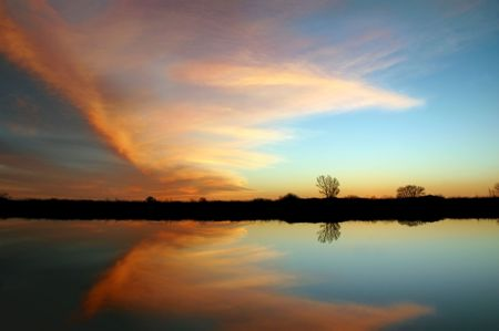 california delta: Natural Butterfly Shaped Sunset Reflection over Leafless Trees, San Joaquin Delta, California