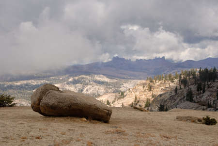 erratic: Glacial Erratic in Mountain Fog