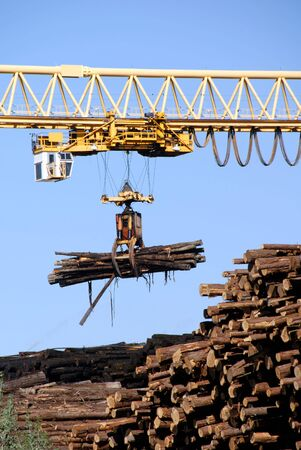 logging: Logging Crane Transporting Cut Logs Stock Photo