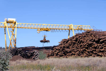 Logging Crane Transporting Cut Logs Stock Photo - 2026179