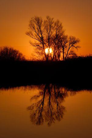 Reflected Trees in Golden Setting Sunlight at Wildlife Refuge Stock Photo - 2601786