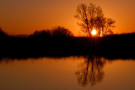 Reflected Riparian Tree in Golden Setting Sunlight Stock Photo - 2601774