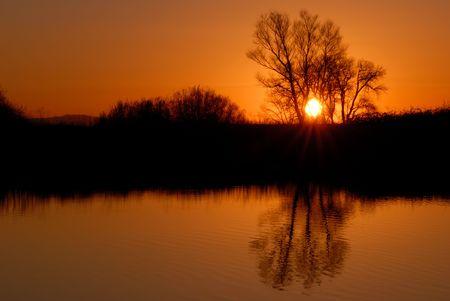 Reflected Riparian Tree in Golden Setting Sunlight Stock Photo - 2601774