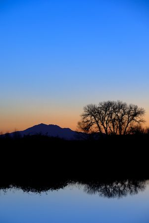 Reflected Riparian Tree in Evening Blue at Wildlife Refuge Stock Photo - 2601768