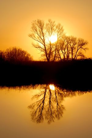 Reflected Tree in Golden Setting Sunlight at Wildlife Refuge Stock Photo - 2690511