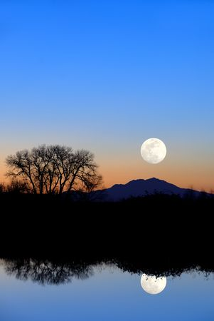 wildlife refuge: Fantasy Reflected Riparian Tree and Full Moon in Evening Blue at Wildlife Refuge Stock Photo