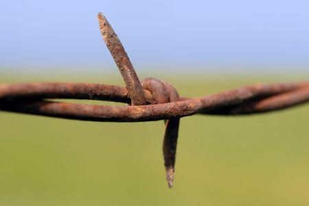 Rusty barbed wire macro on range pasture
