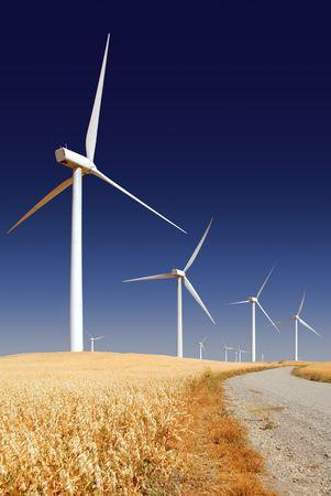 재배 된 귀리에 풍력 터빈을 생성하는 전원 덮여 언덕, 리오 비스타 캘리포니아.