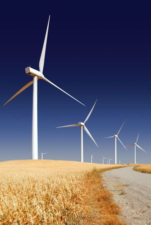 Power generating wind turbines on cultivated oat covered hills, Rio Vista California. Stock Photo - 3399053