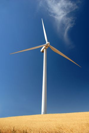 energies: Power generating wind turbine on cultivated oat covered hills, Rio Vista California.