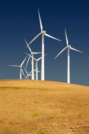 Power generating wind turbines on cultivated cattle grazed hills, Rio Vista California.