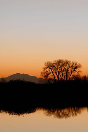 Evening silhouette of riparian area, tree, and mountain, reflected in wildlife pond, San Joaquin Delta, California