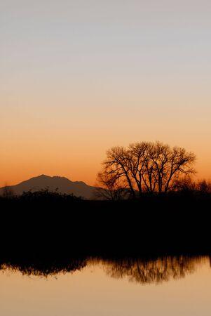 california delta: Evening silhouette of riparian area, tree, and mountain, reflected in wildlife pond, San Joaquin Delta, California