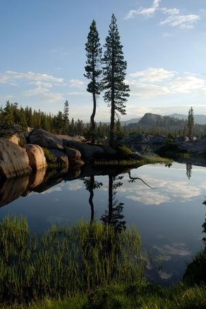 Sierra Nevada trees and granite dome reflected in wilderness lake (Wire Lake, twelve mile backpack into Emigrant Wilderness) Stock Photo - 3420881