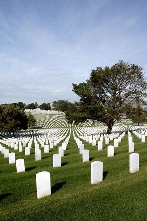 national military cemetery: Endless Headstones, United States National Cemetery Stock Photo